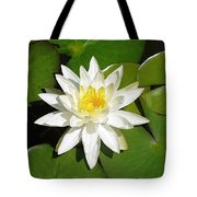 White Lotus Tote Bag by Ellen Henneke