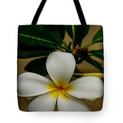 White Plumeria 2 Tote Bag by Cheryl Young