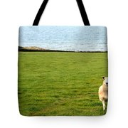 White Sheep In A Green Field By The Sea Tote Bag by Georgia Fowler