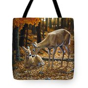 Whitetail Deer - Autumn Innocence 2 Tote Bag by Crista Forest