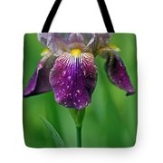 Why Does It Always Rain On Me? Tote Bag by Juergen Roth
