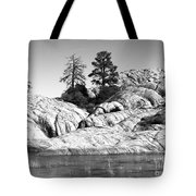 Willow Lake Number One Bw Tote Bag by Heather Kirk