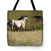 Wild Appaloosa Running Away Tote Bag by Sabrina L Ryan