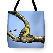 Wild Birds - American Goldfinch Tote Bag by Christina Rollo