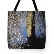 Wild Cherry Tree On The Sacramento River  Tote Bag by Pamela Patch