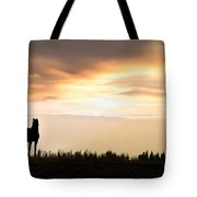 Wild Horse Sunset Tote Bag by Leland D Howard