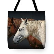 Wild Horses Tote Bag by Daniel Hagerman