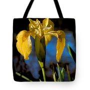 Wild Iris Tote Bag by Robert Bales