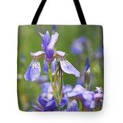 Wild Irises Tote Bag by Rona Black