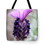 Wild Lavender Tote Bag by Lainie Wrightson