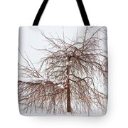 Wild Springtime Winter Tree Tote Bag by James BO  Insogna