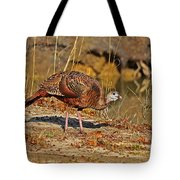Wild Turkey Tote Bag by Al Powell Photography USA