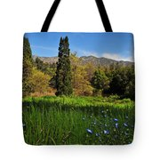 Wildflower Meadow at Descanso Gardens Tote Bag by Lynn Bauer