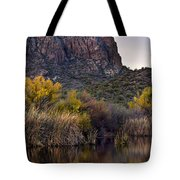 Willow Reflections Tote Bag by Dave Dilli
