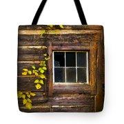 Window To The Soul Tote Bag by Debra and Dave Vanderlaan