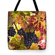 Wine grapes Cabernet Franc Tote Bag by Garry Gay