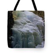 Winter At Zapata Falls Tote Bag by Ellen Heaverlo