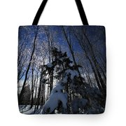 Winter Blue Tote Bag by Karol Livote