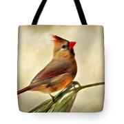 Winter Cardinal Tote Bag by Christina Rollo
