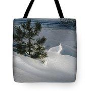 Winter Light Tote Bag by Kae Cheatham