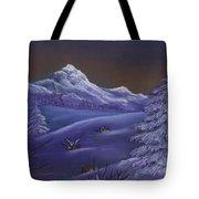Winter Night Tote Bag by Anastasiya Malakhova