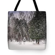 Winter Postcard Tote Bag by Gwen Gibson