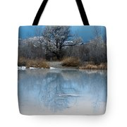 Winter Taking Hold Tote Bag by Fran Riley