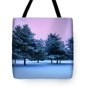 Winter Trees Tote Bag by Brian Jannsen