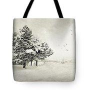 Winter White Tote Bag by Julie Palencia