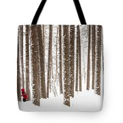 Winter Frolic Tote Bag by Mary Amerman
