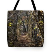 Woodland Path Tote Bag by John Greim