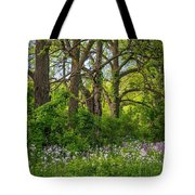 Woodland Phlox 2 Tote Bag by Steve Harrington