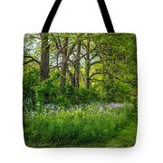 Woodland Phlox Tote Bag by Steve Harrington