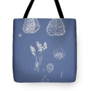 Woodsia Lanosa Tote Bag by Aged Pixel