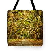 Wormsloe Plantation Oaks Tote Bag by Priscilla Burgers
