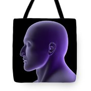 X-ray View Of Human Face, Profile View Tote Bag by Stocktrek Images