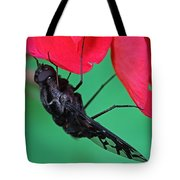 Xenox Tigrinus Tote Bag by Juergen Roth