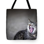 Yawning Cat Tote Bag by Elena Elisseeva