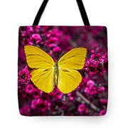Yellow Butterfly Tote Bag by Garry Gay