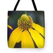 Yellow Cone Flower Rudbeckia Tote Bag by Rich Franco
