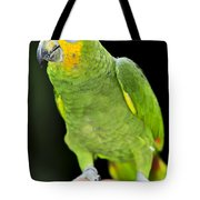 Yellow-shouldered Amazon Parrot Tote Bag by Elena Elisseeva