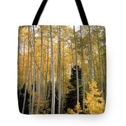 Young Aspens Tote Bag by Eric Glaser