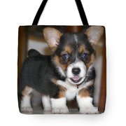 Young Otis Ray 3 Tote Bag by Mike McGlothlen