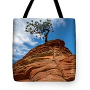 Zion Cypress Tote Bag by John Daly
