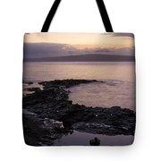 A Sense Sublime Tote Bag by Sharon Mau
