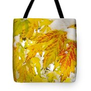 Autumn Snow  Tote Bag by James BO  Insogna