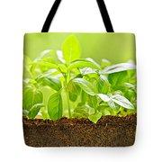Basil Tote Bag by Elena Elisseeva