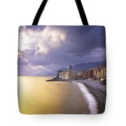 Buildings Along The Coast At Sunset Tote Bag by David DuChemin