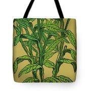 Centaurea Montana, Bachelors Button Tote Bag by Science Source