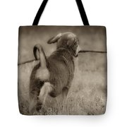 Classic Tote Bag by Kim Henderson
